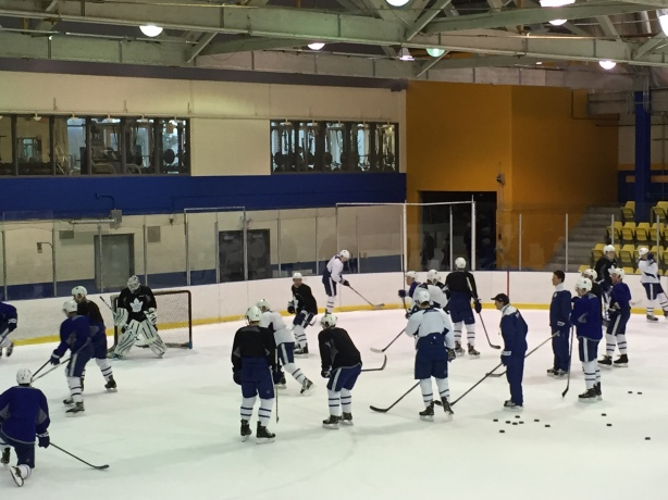 The Toronto Maple Leafs held practice at Father Bauer Arena at UBC on Friday December 1.